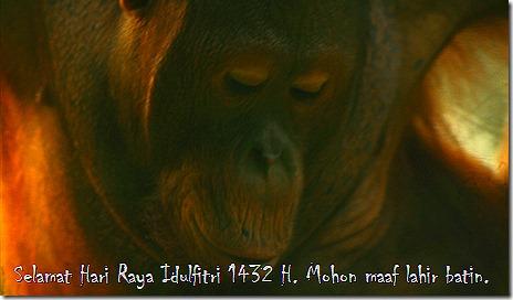 krus wildlife 032