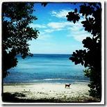 pantai tangkoko (4)
