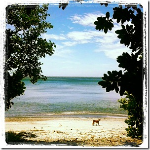 pantai tangkoko (7)