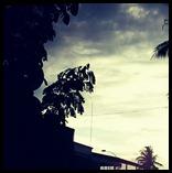 IMG_20120805_095050